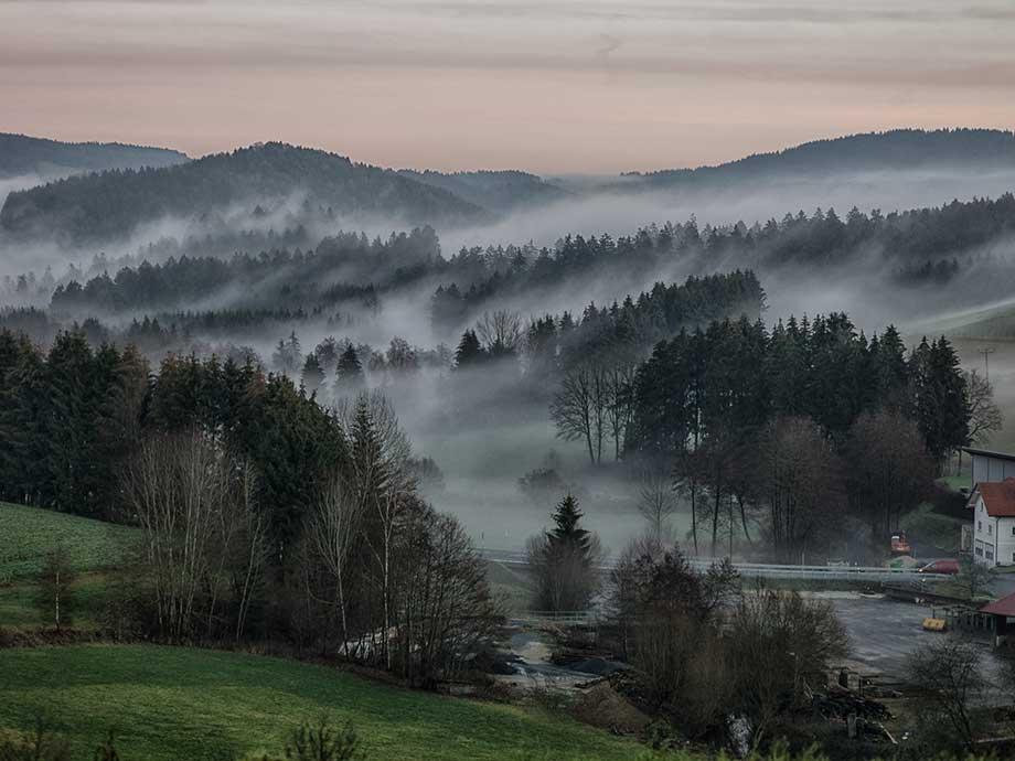 Zeitlang_Landschaft_920x690